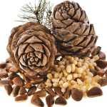 Кедровые орешки и здоровье.