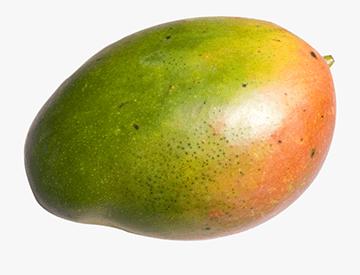 mango-big