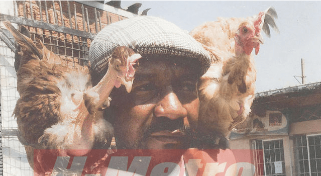 Interesting: Zimbabwean Man Mourns Chicken, Holds Funeral Service For It