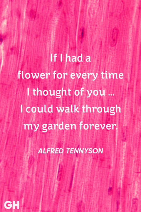 Image result for Valentine's day quotes