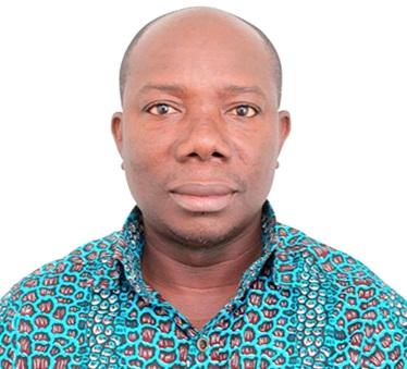 NPP considering e-voting for parliamentary primaries — Nimako