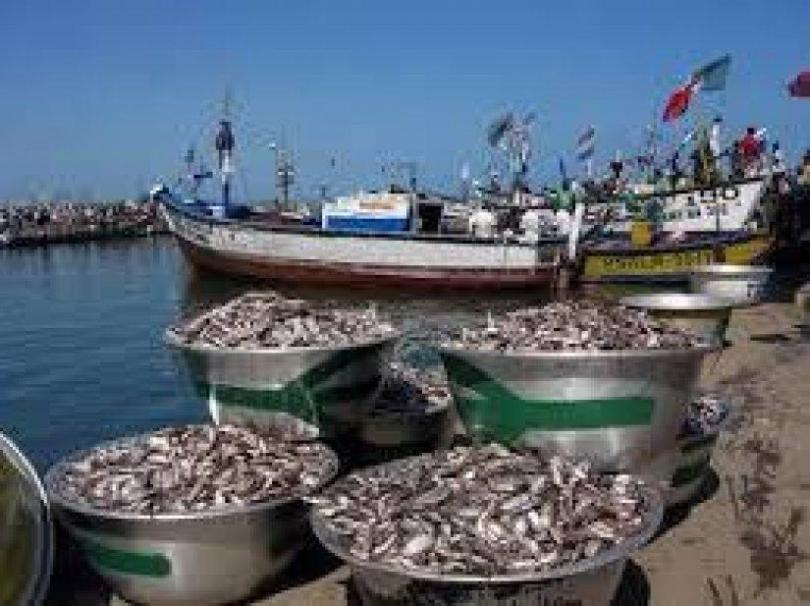 Ghanaian workers report alleged abuses on Chinese-owned fishing vessel