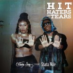 Wendy Shay – H.I.T (Hatters In Tears) Ft. Shatta Wale