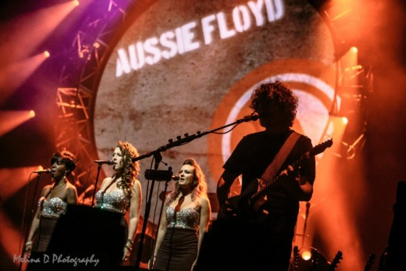 The Australian Pink Floyd, by Melina D Photography