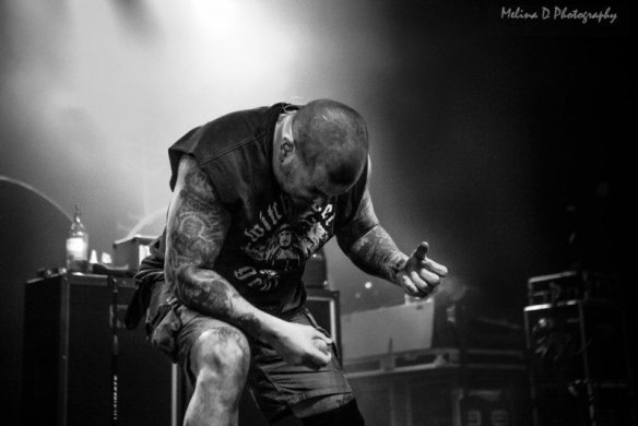 Superjoint, by Melina D Photography