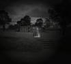AR Ghost Concept 2 (2016)