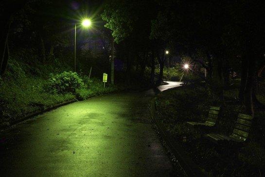 Toyama Park by guen-k