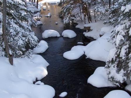 Cold Stream Brook