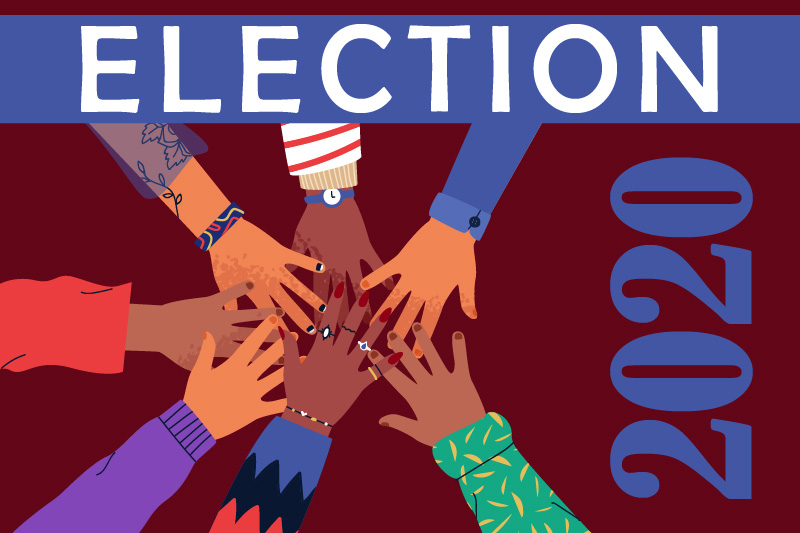 The 2020 AAPHSG Executive Board Election will take place on schedule