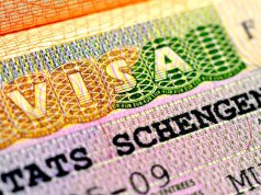 How to Apply for Germany Job Seeker Visa