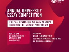 Tana Forum University Essay Competition
