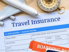 How To Get Travel Insurance For Schengen Visa Application