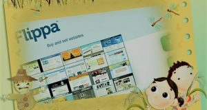 Buy and Sell Websites Like a Professional Flipper