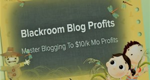 Download Blackroom Blog Profits And Rank Profitable Niches