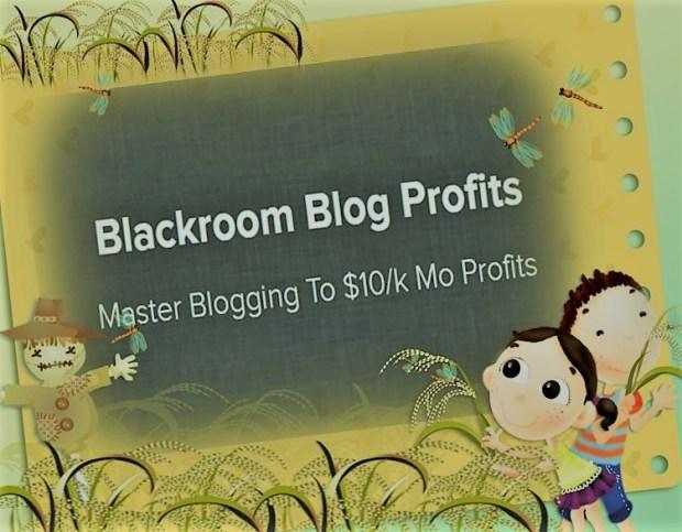 Download Blackroom Blog Profits And Rank Profitable Niches