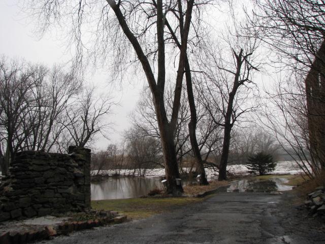Cucumber Alley (Mar. 9, 2009)