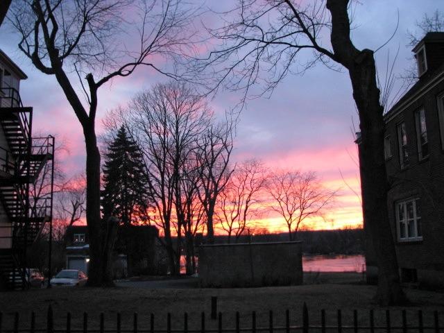 late sunset - 11Mar09 - street view at 16 Wash Av