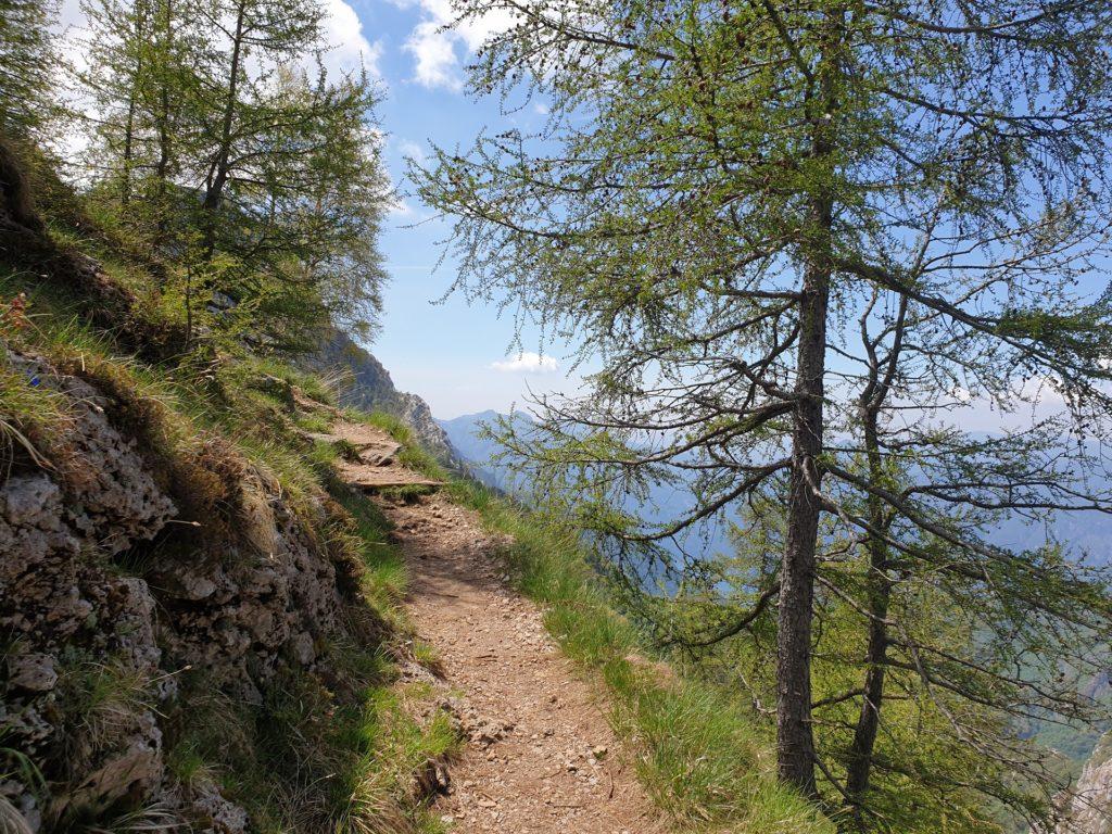 sentiero n. 24 rifugio bietti buzzi