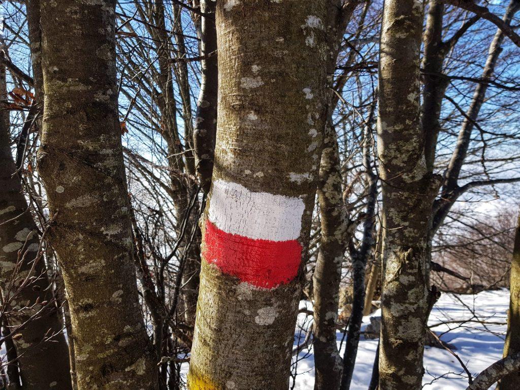 segnavia bianchi e rossi valcava fino alla cime del monte linzone