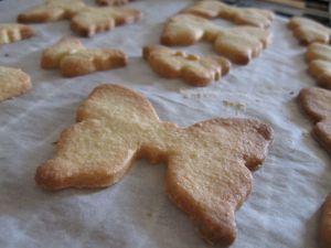 biscotti per cani