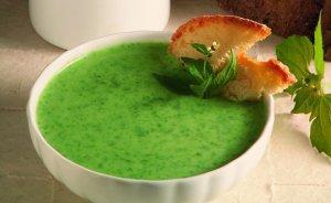 zuppa per cani