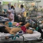 3 dịch bệnh đang hoành hành tại Việt Nam