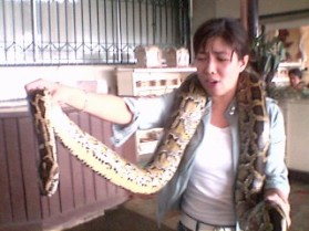 2005 Encounter with a python at Tagaytay Zoo