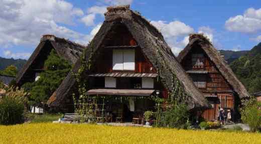 Giappone in Libertà 9 giorni