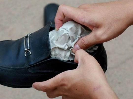 Phải Làm Sao Khi Giày Da Bị Thấm Nước - Giày Da Công Sở Marco Alfredo