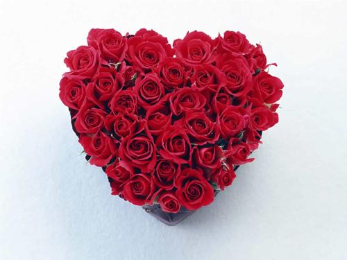 Rosa Como Uma Flor - Assim Era Meu Amor 40
