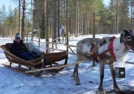 Hei hei ! Hyvää päivää! FAGE-Lehrerin Regula Pauli startet ihren Bildungsurlaub in Finnland