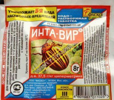 Чем обработать баклажаны от колорадского жука в период плодоношения. Чем лучше обработать баклажаны от колорадского жука