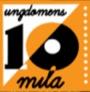 Vill du hänga med till ungdomens 10-mila i Tibro den 5 augusti?