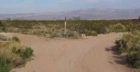 desert road fork