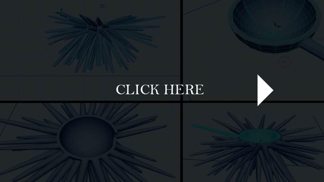 Sea Urchin (4)