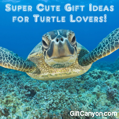Super Cute Gift Ideas For Turtle Lovers Gift Canyon