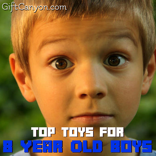 Top Toys For 8 Year Old Boys For 2018 Gift Canyon