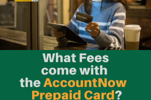 """What fees come with AccountNow Card"""