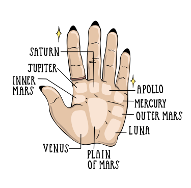 What do you see in a palm reading?