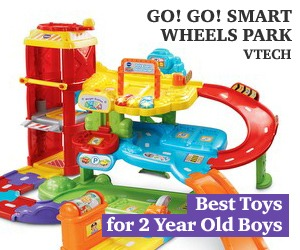 5 Best Toys And Gifts For 2 Years Old Boys Wise Fun Choice In 2018