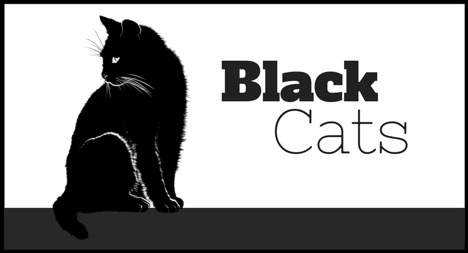 50+ Must Haves for Those who Love Black Cats | The Ultimate Gift List