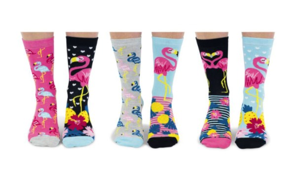 go flamingo six odd socks