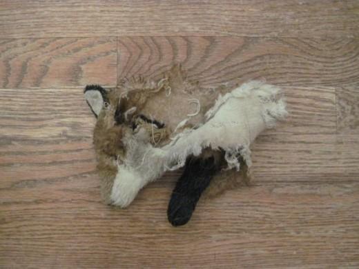 shredded stuffed animal toy