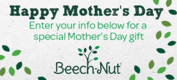 Free Beech-Nut Surprise Gifts Giveway1