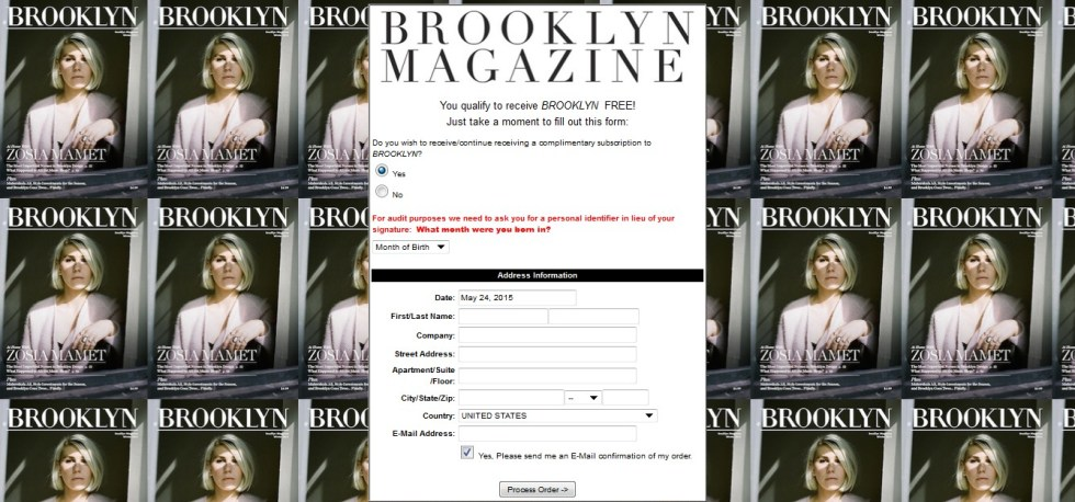 Free Brooklyn Magazine1