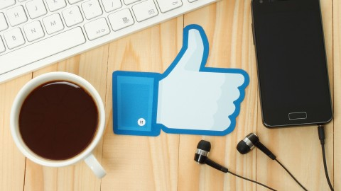 Free Udemy Course on Facebook Marketing  How I Get more than 1000 likes a week
