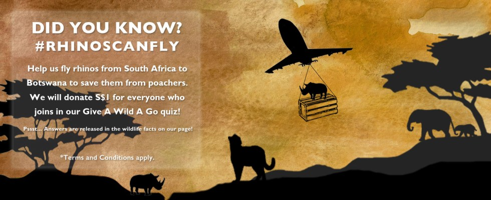 Win the grand prize of a safari trip for 2 to South Africa