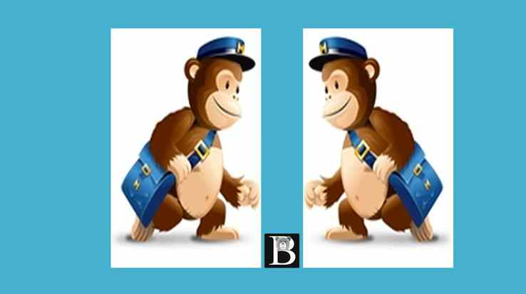 Free Udemy Course on Mailchimp tutorial Step by step in depth