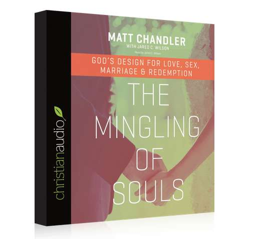 FREE AUDIO BOOK THE MINGLING OF SOULS
