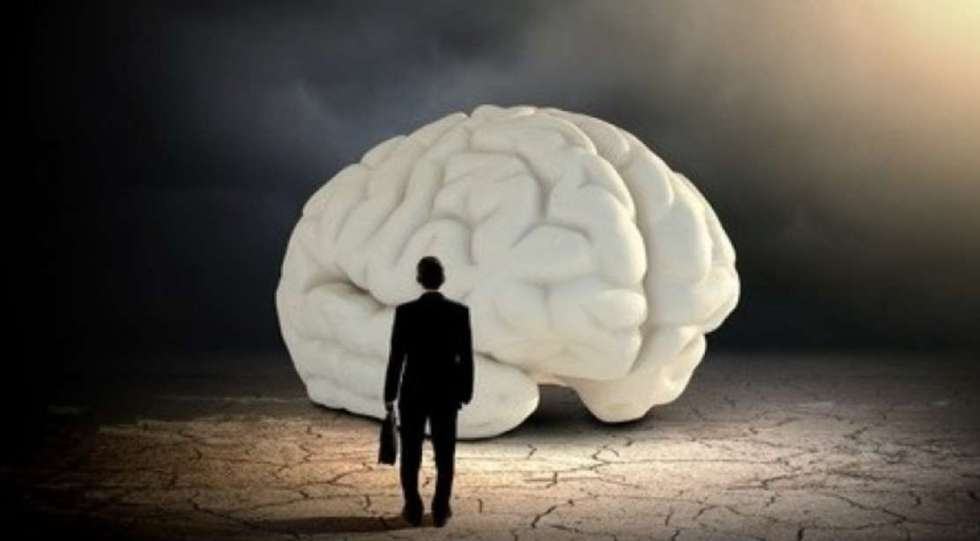 #Free #Udemy Course on Meet your brain a short introduction to neuroscience